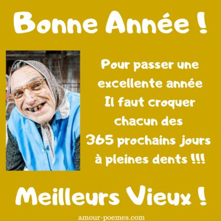 carte-bonne-annee-drole-message-meilleurs-voeux-humour-souhaits-marrants-image.png